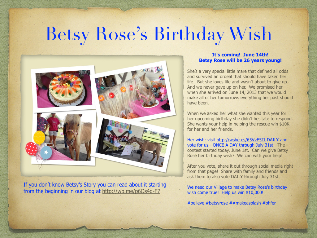 Betsy Roses Birthday Wish Its Free But Time Sensitive Please
